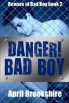 Danger! Bad Boy - April Brookshire