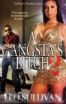 A Gangsta's Bitch part 2 - Leo Sullivan