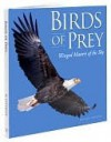 Birds of Prey - Michael Petersen