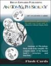 Anatomy & Physiology Flash Cards - I. Edward Alcamo