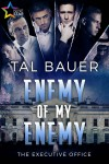 Enemy of My Enemy - Tal Bauer