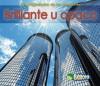 Brillante U Opaco = Shiny or Dull - Charlotte Guillain