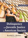 Delinquency and Juvenile Justice in American Society - Randall G. Shelden