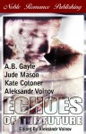 Echoes of the Future - Jude Mason, Kate Cotoner, A.B. Gayle