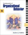 Fundamentals of Organizational Behavior - Andrew J. DuBrin