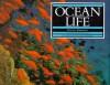 Ocean Life - Steve Parker