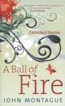 A Ball of Fire: Collected Stories - John Montague