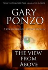 The View from Above - Gary Ponzo