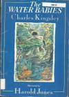 The Water Babies - Charles Kingsley, Howard Jones