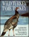 Wild Turkey, Tame Turkey - Dorothy Hinshaw Patent