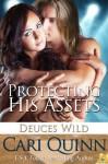 Protecting His Assets  - Cari Quinn