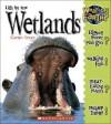Life in the Wetlands - Carolyn Scrace