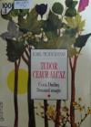 Drumul Magic (Tudor Ceaur Alcaz, #2) - Ionel Teodoreanu