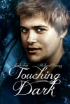 Touching Dark - Richard Denney