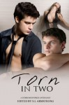 Torn In Two - S.L. Armstrong, G.S. Wiley, Lee Cairney, Kelly Rand