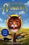 Warriors: Dawn of the Clans #2: Thunder Rising - Erin Hunter, Wayne McLoughlin