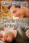 Christmas Serendipity - Liam Livings