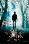 Wo die verlorenen Seelen wohnen - Dermot Bolger, Bernadette Ott