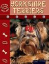 Yorkshire Terriers - Lynn M. Stone