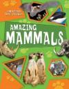 Amazing Mammals (Amazing Life Cycles) - Honor Head