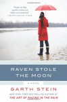 Raven Stole the Moon: A Novel - Garth Stein