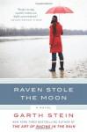 Raven Stole the Moon: A Novel - Garth Stein