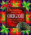 Amazing Book of Origami - Jon Tremaine