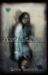 Angelglass - David Barnett
