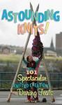 Astounding Knits!: 101 Spectacular Knitted Creations and Daring Feats - Lela Nargi