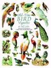 Old-Time Bird Vignettes in Full Color - Carol Belanger Grafton