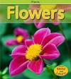 Flowers, Vol. 1 - Patricia Whitehouse