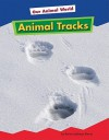 Animal Tracks (Amicus Readers: Our Animal World, Level 1) - Karen Latchana Kenney