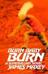 Burn Baby Burn: A Supervillain Novel - James Maxey
