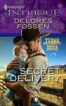 Secret Delivery - Delores Fossen