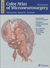 Color Atlas of Microneurosurgery, Volume 2: Cerebrovascular Lesions: Microanatomy, Approaches and Techniques - Robert F. Spetzler, Wolfgang T. Koos, Johannes Lang, B. Richling