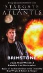 Stargate Atlantis: Brimstone - David Niall Wilson