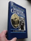Winston Churchill: A Biography - Piers Brendon