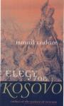 Elegy for Kosovo: Stories - Ismail Kadaré, Peter Constantine
