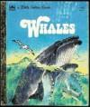 Whales - Jane Werner Watson, Rod Ruth