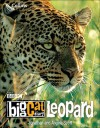 Big Cat Diary: Leopard - Jonathan Scott, Angela Scott
