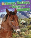 Horses, Donkeys, and Mules in the Marines (America's Animal Soldiers) - Meish Goldish