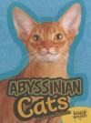 Abyssinian Cats - Joanne Mattern