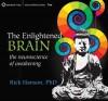 The Enlightened Brain: The Neuroscience of Awakening - Rick Hanson