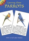 Learning About Parrots - Lisa Bonforte