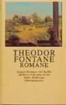 Romane - Theodor Fontane, Norbert Mecklenburg, Fritz Martini