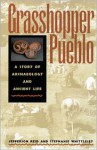 Grasshopper Pueblo: A Story of Archaeology and Ancient Life - J. Jefferson Reid, Stephanie Whittlesey