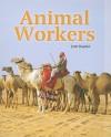 Animal Workers - Julie Haydon