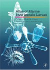Atlas Of Marine Invertebrate Larvae - Craig M. Young