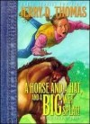 A Horse, a Hat, and a Big Wet Splat! and Other Stories - Jerry D. Thomas