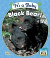 It's a Baby Black Bear! - Kelly Doudna